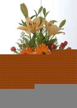 Hatay çiçek , çiçekçi , çiçekçilik  cam yada mika vazo içinde karisik mevsim çiçekleri