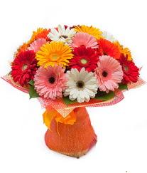 Renkli gerbera buketi  Hatay çiçek gönderme