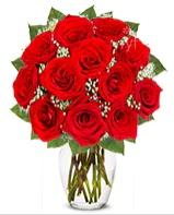 12 adet vazoda kıpkırmızı gül  Hatay çiçek yolla , çiçek gönder , çiçekçi