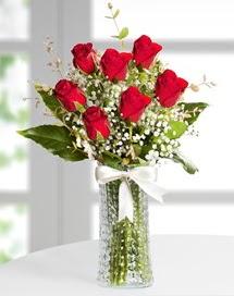 Cam vazoda 7 adet kırmızı gül  Hatay 14 şubat sevgililer günü çiçek