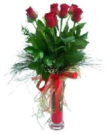 vazo içerisinde 5 kırmızı gül  Hatay çiçekçi mağazası