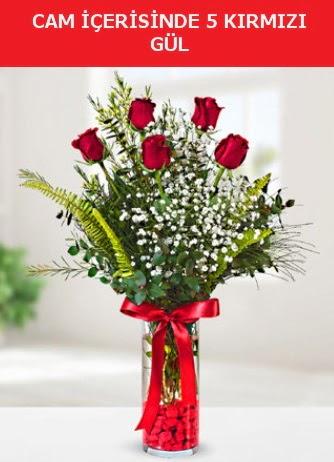 Cam içerisinde 5 adet kırmızı gül  Hatay çiçek servisi , çiçekçi adresleri