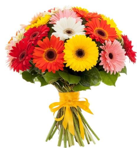 Gerbera demeti buketi  Hatay uluslararası çiçek gönderme