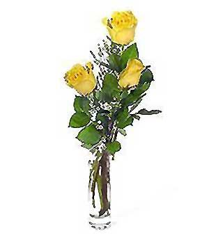 Hatay güvenli kaliteli hızlı çiçek  3 adet kalite cam yada mika vazo gül