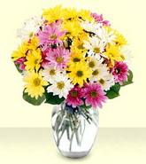 Hatay güvenli kaliteli hızlı çiçek  mevsim çiçekleri mika yada cam vazo