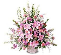 Hatay çiçek servisi , çiçekçi adresleri  Tanzim mevsim çiçeklerinden çiçek modeli