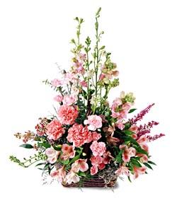 Hatay anneler günü çiçek yolla  mevsim çiçeklerinden özel