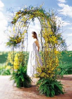 Hatay çiçek mağazası , çiçekçi adresleri  güller ve mevsim çiçegi