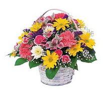 Hatay 14 şubat sevgililer günü çiçek  mevsim çiçekleri sepeti özel