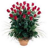 Hatay çiçek gönderme sitemiz güvenlidir  10 adet kirmizi gül cam yada mika vazo