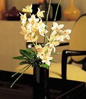 Hatay kaliteli taze ve ucuz çiçekler  cam yada mika vazo içerisinde dal orkide