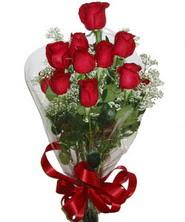 9 adet kaliteli kirmizi gül   Hatay internetten çiçek satışı