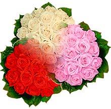 3 renkte gül seven sever   Hatay 14 şubat sevgililer günü çiçek