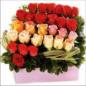 15 adet renkli gül ve cam   Hatay çiçek online çiçek siparişi