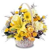 sadece sari çiçek sepeti   Hatay çiçek siparişi vermek