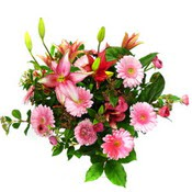 lilyum ve gerbera çiçekleri - çiçek seçimi -  Hatay cicek , cicekci