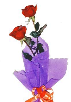 2  adet kirmizi gül buketi   Hatay 14 şubat sevgililer günü çiçek