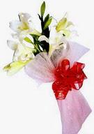 Hatay 14 şubat sevgililer günü çiçek  ince vazoda gerbera ve ayi