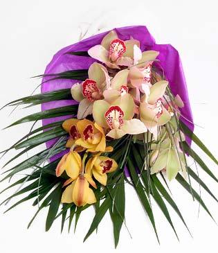 Hatay İnternetten çiçek siparişi  1 adet dal orkide buket halinde sunulmakta
