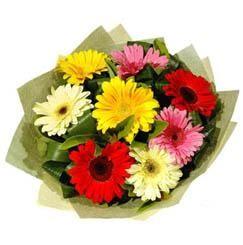 9 adet karisik gerbera demeti  Hatay ucuz çiçek gönder