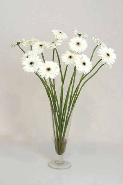 Hatay ucuz çiçek gönder  cam vazo içerisinde 17 adet sade gerbera