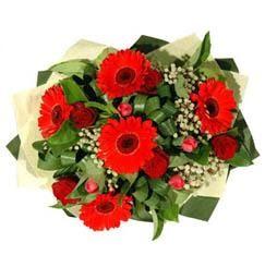 Hatay anneler günü çiçek yolla   5 adet kirmizi gül 5 adet gerbera demeti