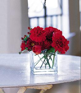 Hatay anneler günü çiçek yolla  kirmizinin sihri cam içinde görsel sade çiçekler