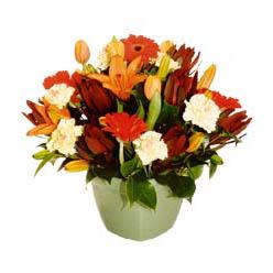 mevsim çiçeklerinden karma aranjman  Hatay çiçekçiler