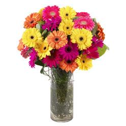 KARISIK GERBERALARDAN CAM VAZO TANZIMI  Hatay çiçekçi mağazası