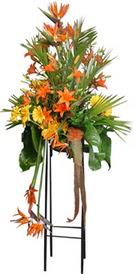 Hatay çiçek servisi , çiçekçi adresleri  perförje tanzimi dügün nikah ve açilislara