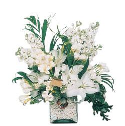 Hatay güvenli kaliteli hızlı çiçek  sadece beyazlardan olusmus mevsim cam yada mika tanzim