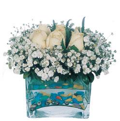 Hatay çiçek online çiçek siparişi  mika yada cam içerisinde 7 adet beyaz gül