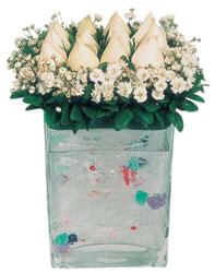 Hatay çiçek online çiçek siparişi  7 adet beyaz gül cam yada mika vazo tanzim