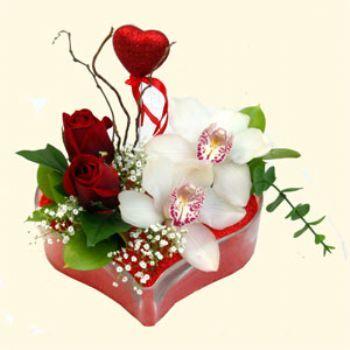 Hatay çiçekçi telefonları  1 kandil orkide 5 adet kirmizi gül mika kalp