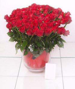 Hatay çiçek yolla , çiçek gönder , çiçekçi   101 adet kirmizi gül