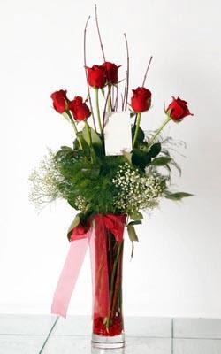 Hatay İnternetten çiçek siparişi  6 adet kirmizi gül ve cam yada mika vazo
