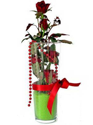 Hatay online çiçekçi , çiçek siparişi  Cam yada mika içerisinde 9 adet kirmizi gül - sevdiklerinize özel