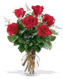 Hatay çiçek siparişi vermek  7 adet kirmizi gül cam yada mika vazoda sevenlere