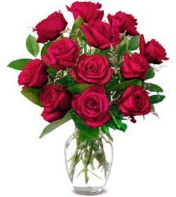 Hatay online çiçekçi , çiçek siparişi  1 düzine kirmizi gül sevenlere özel vazo gülleri