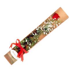 Hatay 14 şubat sevgililer günü çiçek  Kutuda tek 1 adet kirmizi gül çiçegi