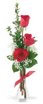 Hatay İnternetten çiçek siparişi  mika yada cam vazoda 3 adet kirmizi gül