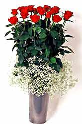 Hatay çiçek yolla , çiçek gönder , çiçekçi   9 adet kirmizi gül cam yada mika vazoda