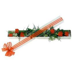 Hatay çiçek servisi , çiçekçi adresleri  6 adet kirmizi gül kutu içerisinde