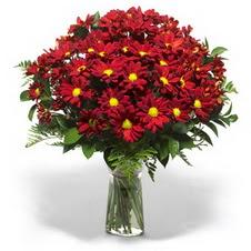 Hatay online çiçek gönderme sipariş  Kir çiçekleri cam yada mika vazo içinde