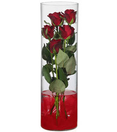cam içerisinde 7 adet kirmizi gül  Hatay kaliteli taze ve ucuz çiçekler