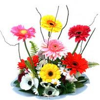 Hatay hediye sevgilime hediye çiçek  camda gerbera ve mis kokulu kir çiçekleri
