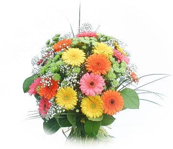 13 adet gerbera çiçegi buketi  Hatay online çiçekçi , çiçek siparişi