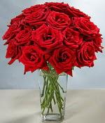 Hatay çiçek servisi , çiçekçi adresleri  Sevdiklerinize özel ürün 12 adet cam içerisinde kirmizi gül  Hatay hediye sevgilime hediye çiçek