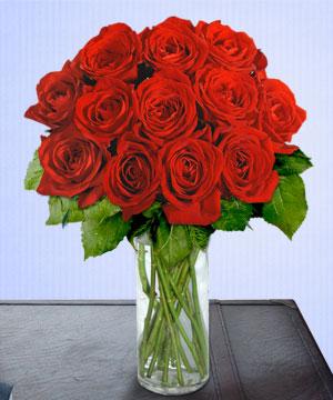 Anneme 12 adet cam içerisinde kirmizi gül  Hatay çiçek servisi , çiçekçi adresleri