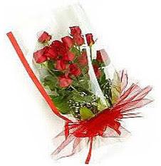 13 adet kirmizi gül buketi sevilenlere  Hatay yurtiçi ve yurtdışı çiçek siparişi